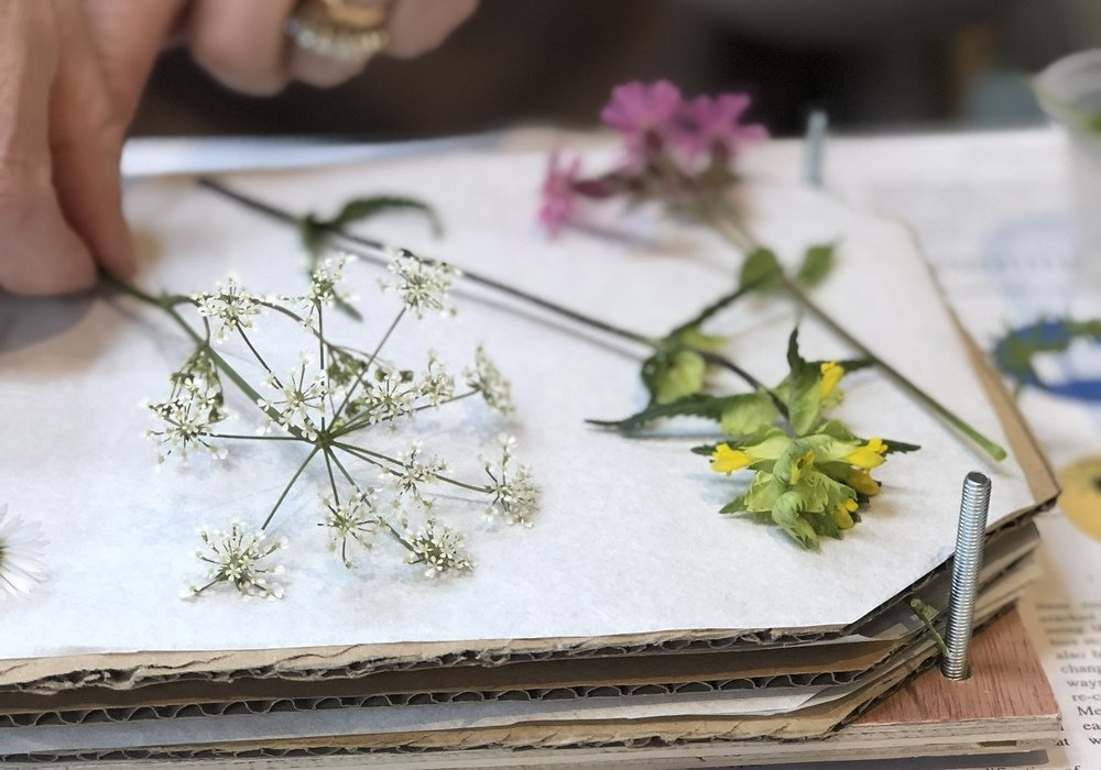 The Art of Flower Pressing with Gabriella Bennett