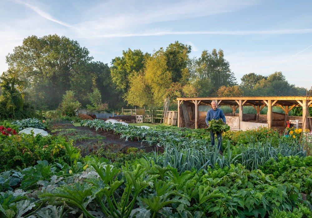 No-Dig Organic Vegetable Growing Workshop with Charles Dowding