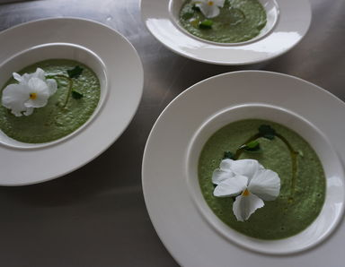 Cold cucumber soup, Cucumbers grown at Guardswell