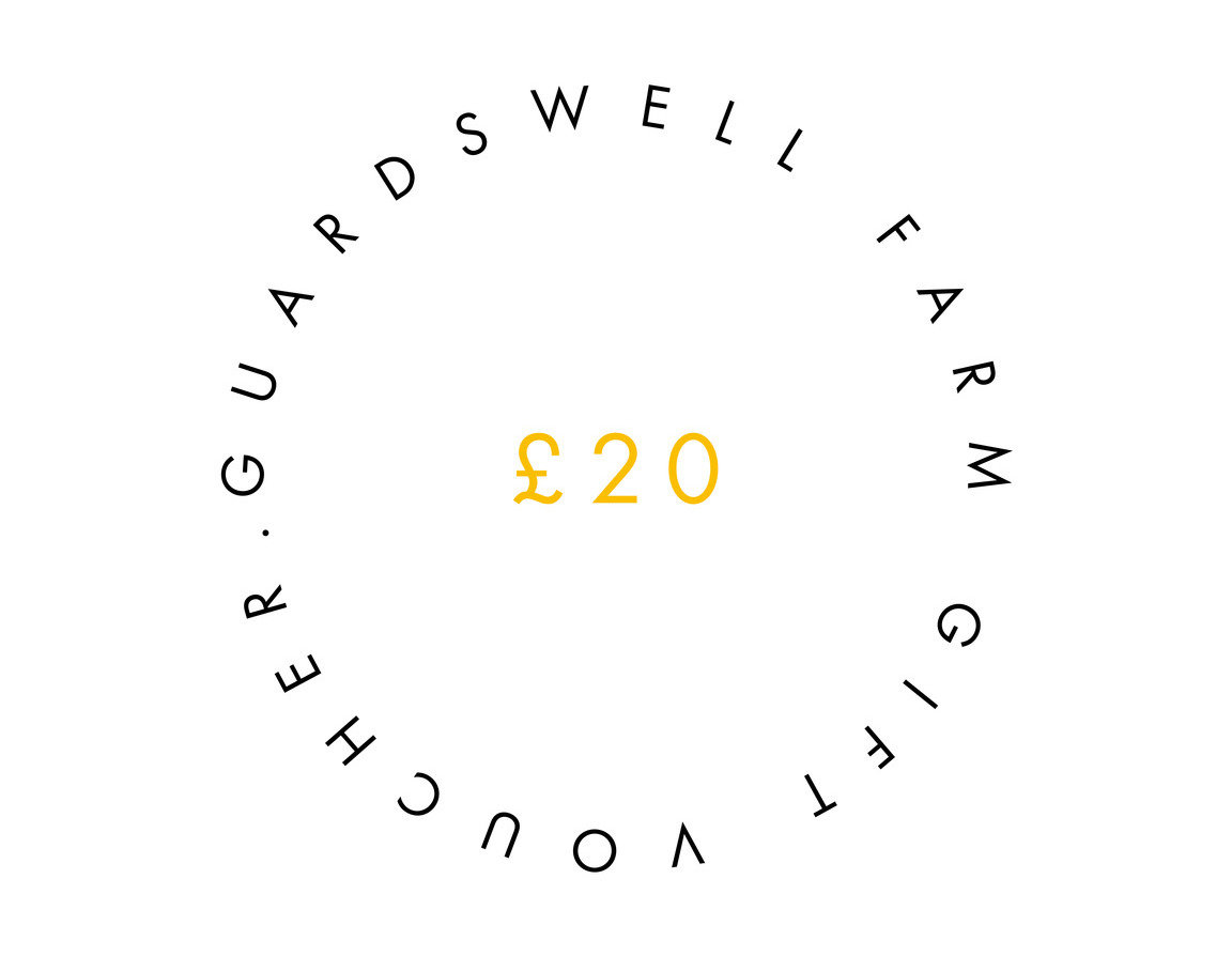GUARDSWELL VOUCHER £20