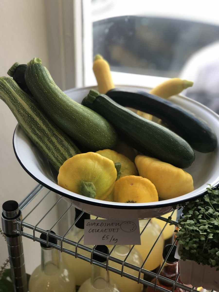 Guardswell Grows courgettes in Lon the Store, Dunkeld